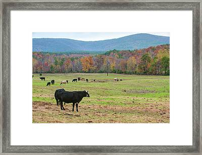 Wide Open Spaces - Autumn Landscape Framed Print by Gregory Ballos