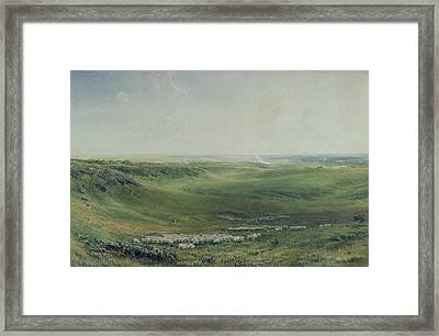 Wide Pastures Framed Print