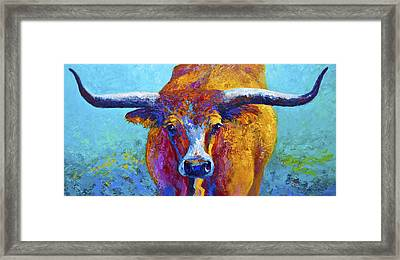 Widespread - Texas Longhorn Framed Print by Marion Rose