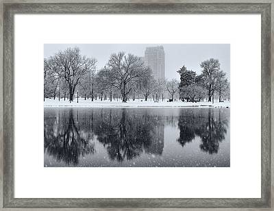 Snowy Reflections Of Trees In Lake At City Park, Denver Co  Framed Print