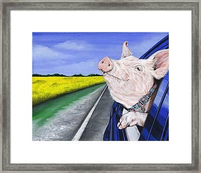 Wilbur Framed Print by Twyla Francois