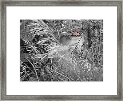 Wilbur's Bin II Framed Print