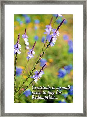 Wild About Gratitude 1 Framed Print