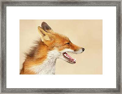 Wild And Free - Fox Portrait Framed Print by Roeselien Raimond