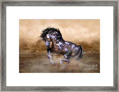 Wild And Free Horse Art Framed Print by Shanina Conway