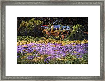Wild Asters At Picuris Framed Print by Donna Clair