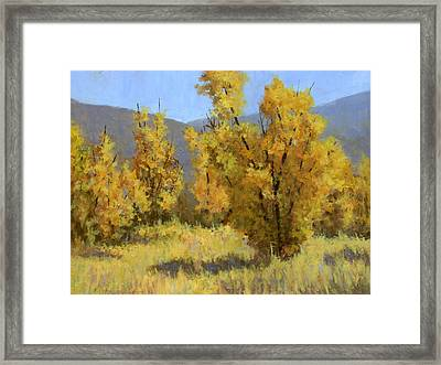 Wild Autumn Framed Print by David King
