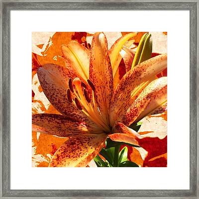 Wild Beauty With Freckles Framed Print