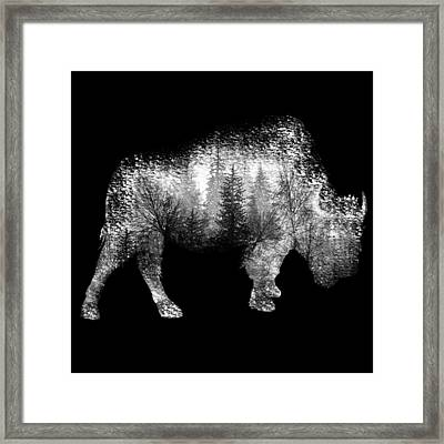 Wild Bison Framed Print by Diana Van