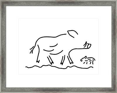 Wild Boar Young Wild Sow Framed Print by Lineamentum