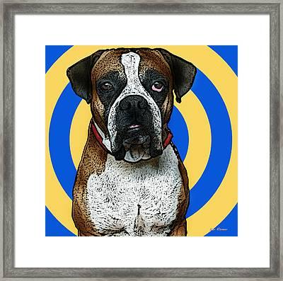 Wild Boxer 1 Framed Print by Bibi Romer