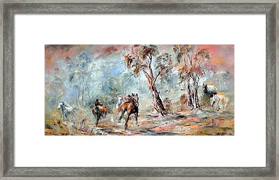 Wild Brumbies Framed Print