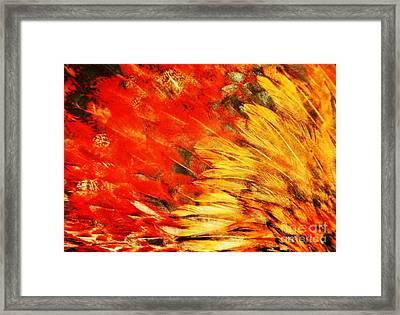 Wild Chicken Feathers Framed Print by Jan Gelders