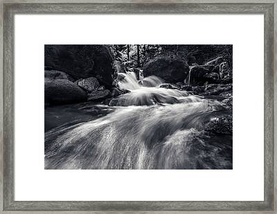 wild creek in Harz, Germany Framed Print
