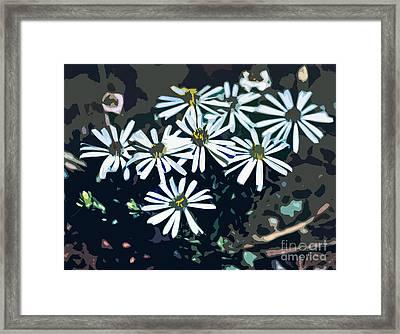 Wild Daisy Art  Framed Print by Juls Adams