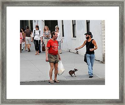 Framed Print featuring the photograph Wild Dog by JoAnn Lense