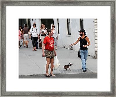 Wild Dog Framed Print by JoAnn Lense