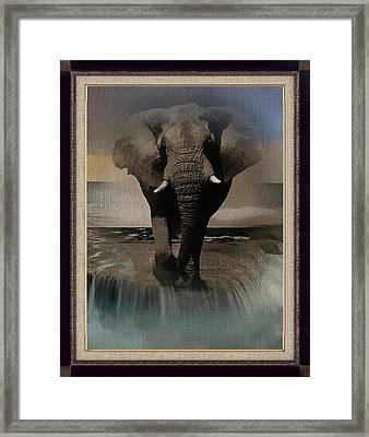 Wild Elephant Montage Framed Print