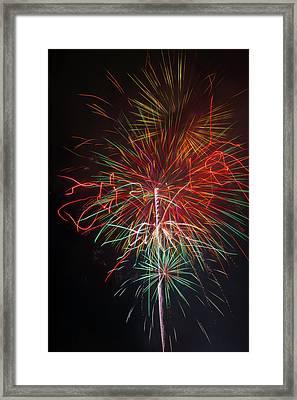 Wild Fireworks Framed Print