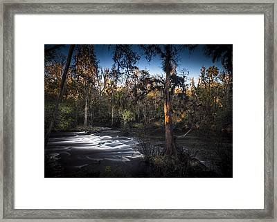Wild Florida Framed Print by Marvin Spates