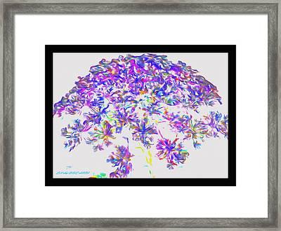 Wild Flower Bouquet Framed Print by Debra Lynch
