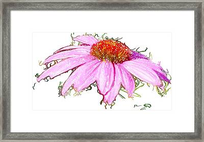 Framed Print featuring the photograph  Wild Flower Three by Heidi Smith