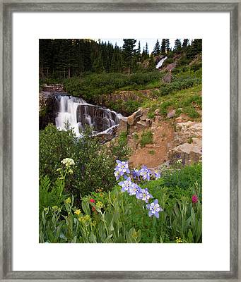 Wild Flowers And Waterfalls Framed Print
