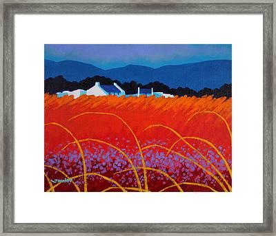 Wild Flowers County Wicklow Framed Print by John  Nolan