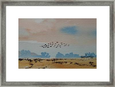 Wild Geese Heading Home. Framed Print by Roger Cummiskey