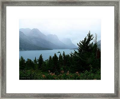 Wild Goose Island In The Rain Framed Print