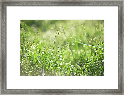 Wild Grass Voices. Green World Framed Print by Jenny Rainbow