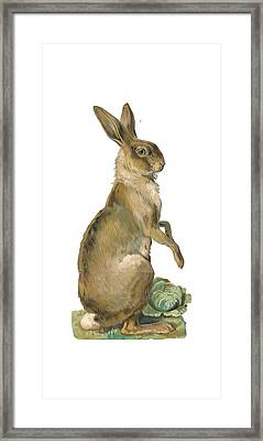Framed Print featuring the digital art Wild Hare by ReInVintaged
