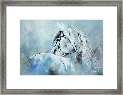 Wild Horse 01 Framed Print by Gull G