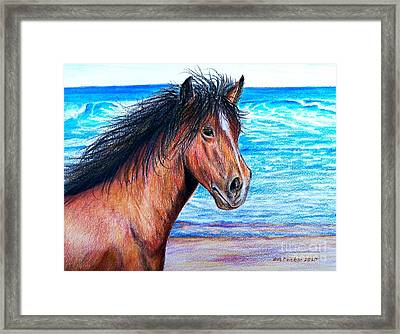 Wild Horse On The Beach Framed Print