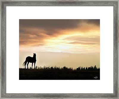 Wild Horse Sunset Framed Print by Leland D Howard