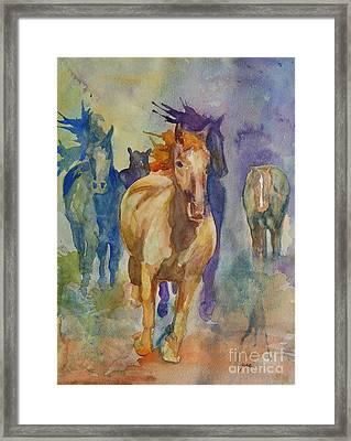Wild Horses Framed Print by Gretchen Bjornson