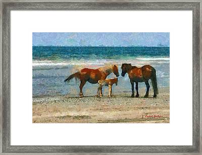 Wild Horses Of The Outer Banks Framed Print