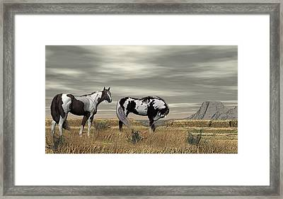 Wild Horses Framed Print by Walter Colvin