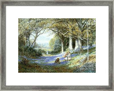 Wild Hyacinths Framed Print by MotionAge Designs