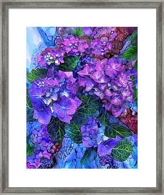 Wild Hydrangeas Framed Print by Carol Cavalaris
