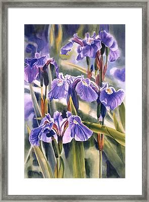 Wild Irises #1 Framed Print