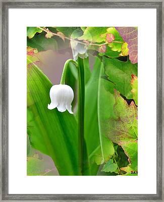 Wild Lily Bell Framed Print by Debra     Vatalaro
