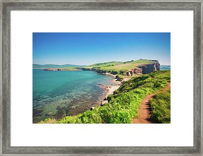 Wild Lovely Bay And Seacoast Of The Pacific Ocean Framed Print