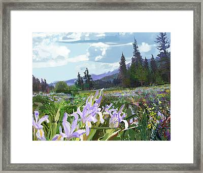 Wild Meadow Framed Print