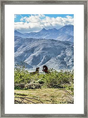Wild Metal Mustangs Framed Print