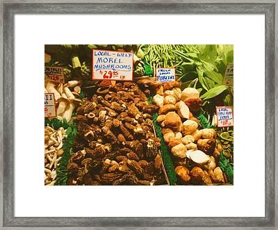 Wild Morell Mushrooms Framed Print by Lydia L Kramer