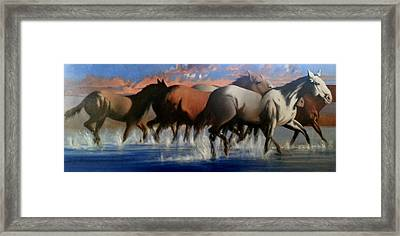 Wild Mustangs Of The Verder River Framed Print