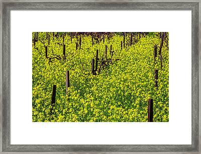 Wild Mustard Grass Framed Print