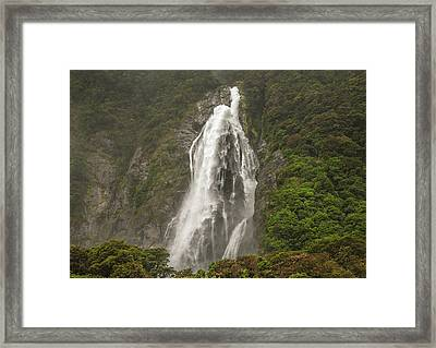 Wild New Zealand Framed Print