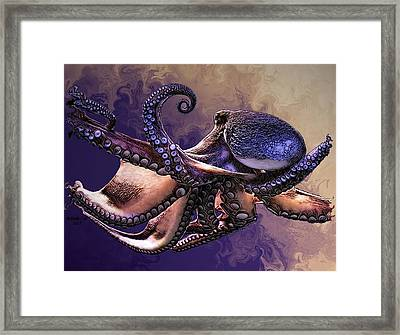 Wild Octopus Framed Print